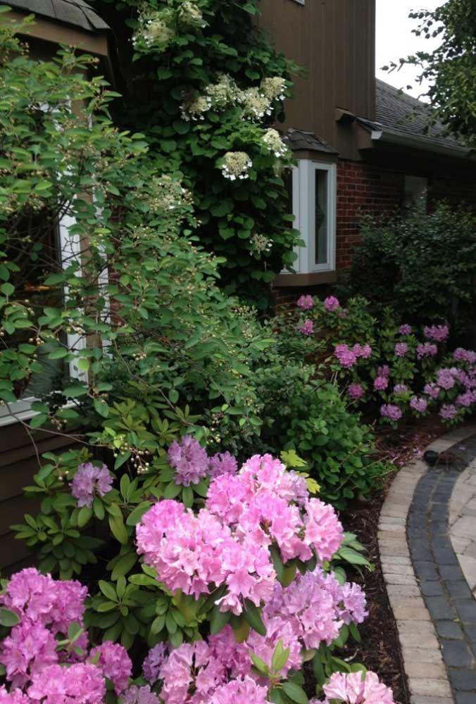 No jardim, as azaleias ajudam a embelezar a fachada da casa