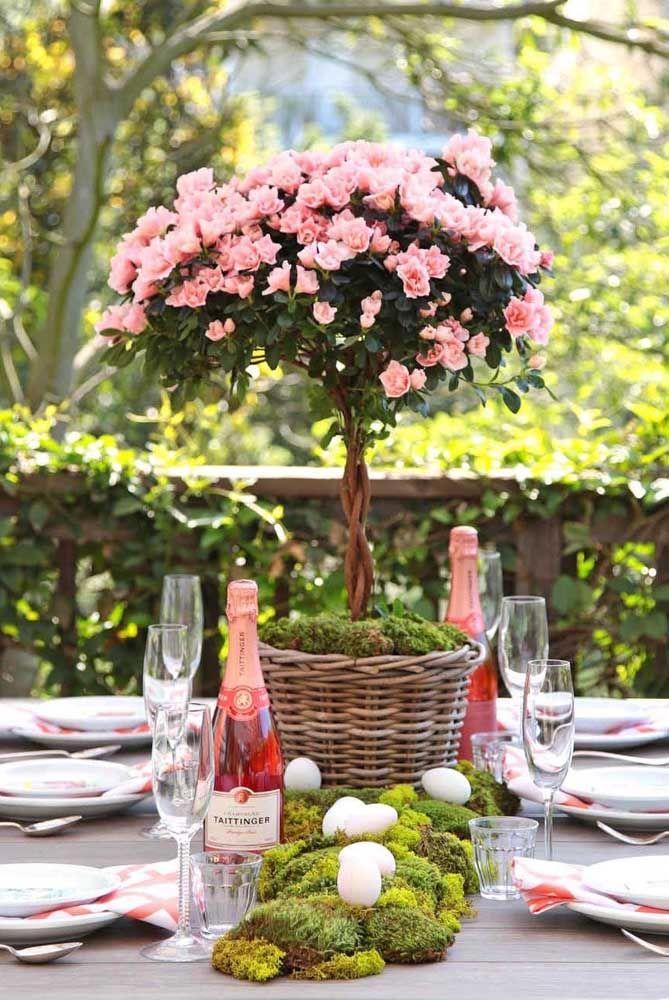 Bonsai de azaleia para decorar a mesa da festa