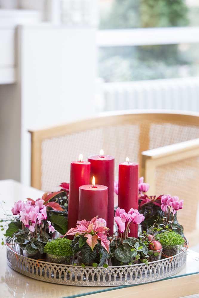 Sugestão para decoração de natal: velas e azaleias vermelhas