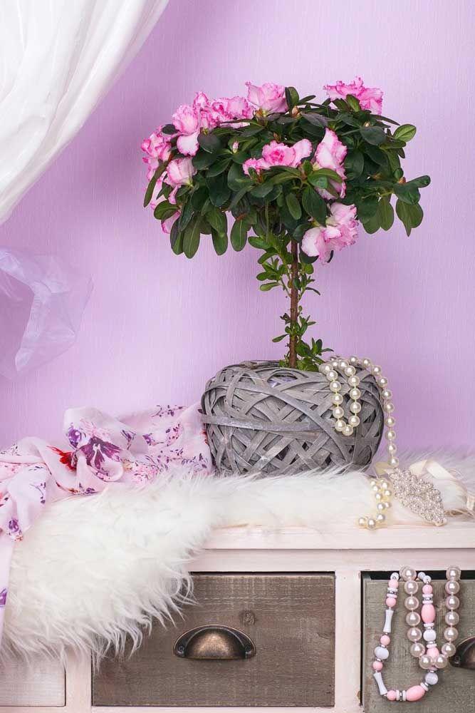 Bonsai de azaleias: um mimo pra lá de especial capaz de encher a decoração de beleza, arte e encanto
