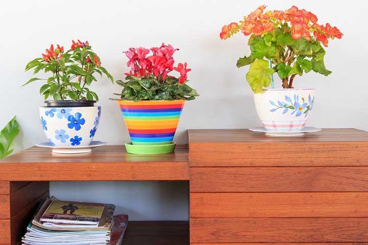 A escolha do vaso também é importante para a decoração, portanto, capriche!