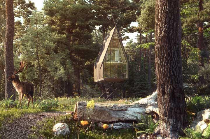 Casa na árvore de vidro; você trocaria uma casa tradicional por uma dessa?