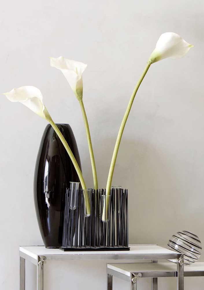 Trio de lírios da paz delicado e moderno para a decoração