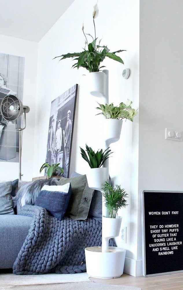 Um jardim vertical diferente e inusitado para o quarto de casal