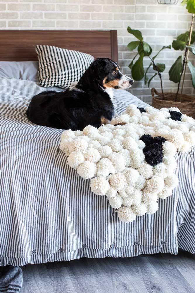 Até os pets da casa vão aprovar a ideia do tapete de retalhos