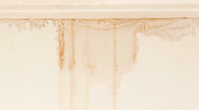 Como limpar parede suja: veja o passo a passo e cuidados
