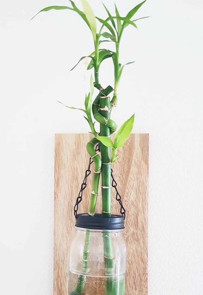 A proposta aqui foi manter o bambu da sorte suspenso na parede de um modo bem diferente