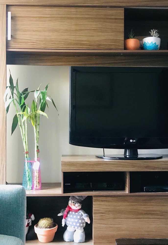 Sobre o rack da sala e ao lado da janela, o bambu da sorte se esbalda com a luminosidade indireta