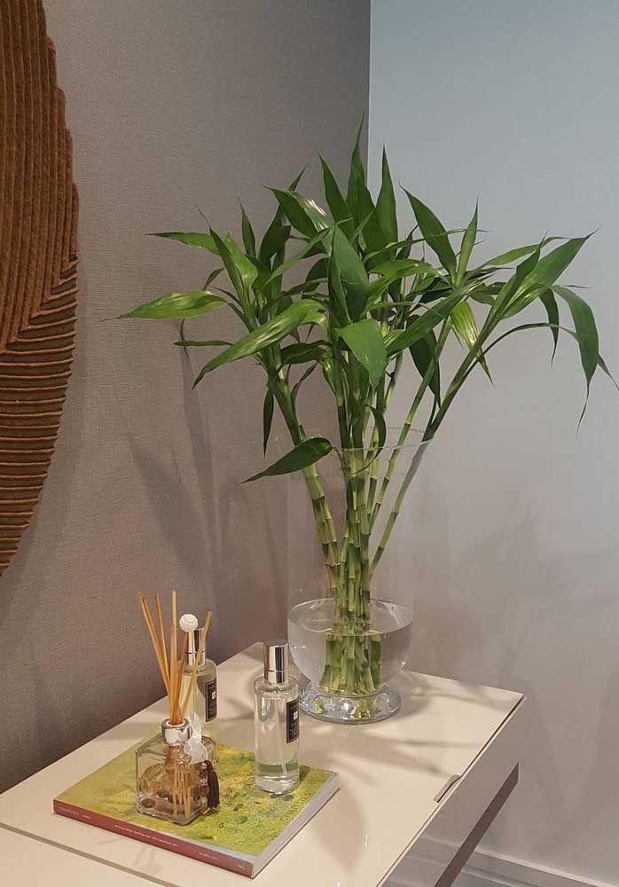 Deixe o cantinho com o bambu da sorte ainda mais especial usando difusores aromáticos