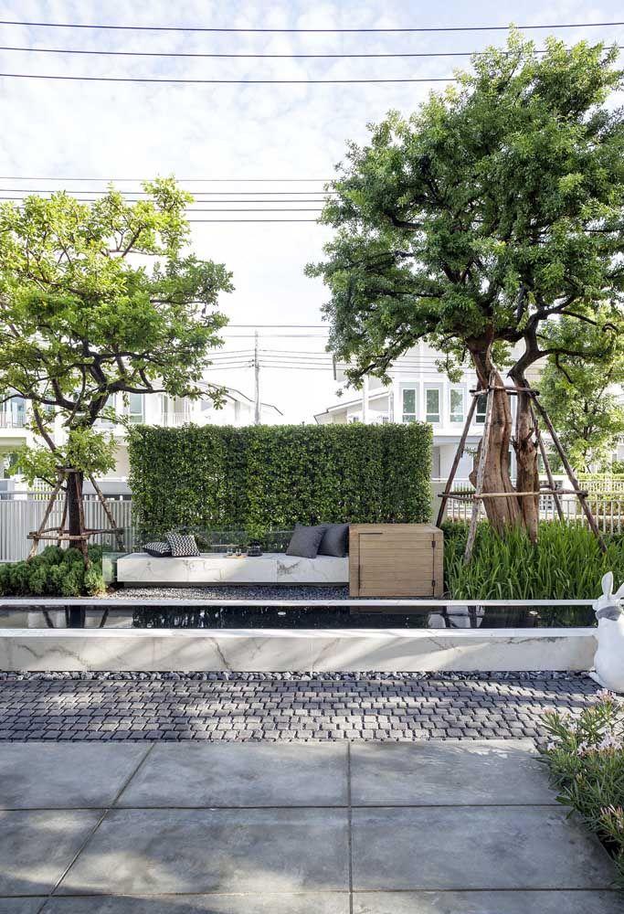 Um jardim de pequenos arbustos, árvores e uma parede verde para encerrar a proposta