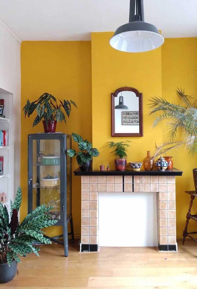 A parede amarela destaca o verde intenso da Begônia Maculata