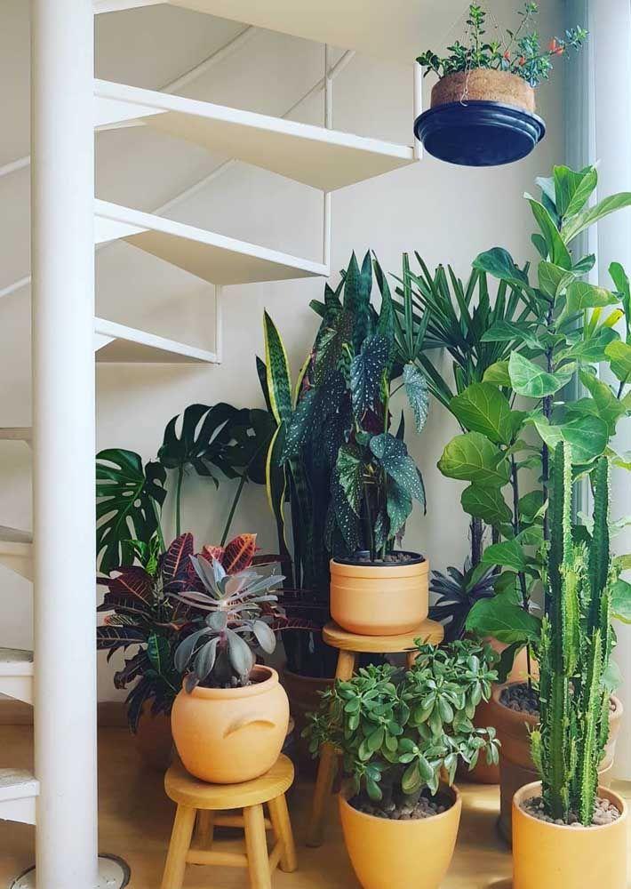 Use e abuse daquele espaço vazio embaixo da escada enchendo-o de plantas