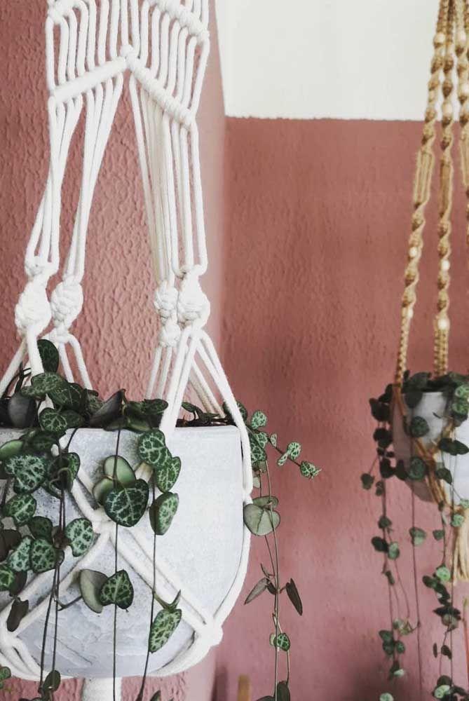 Jardim suspenso de begônias; destaque para o suporte em macramê que deixou o visual das plantas ainda mais bonito