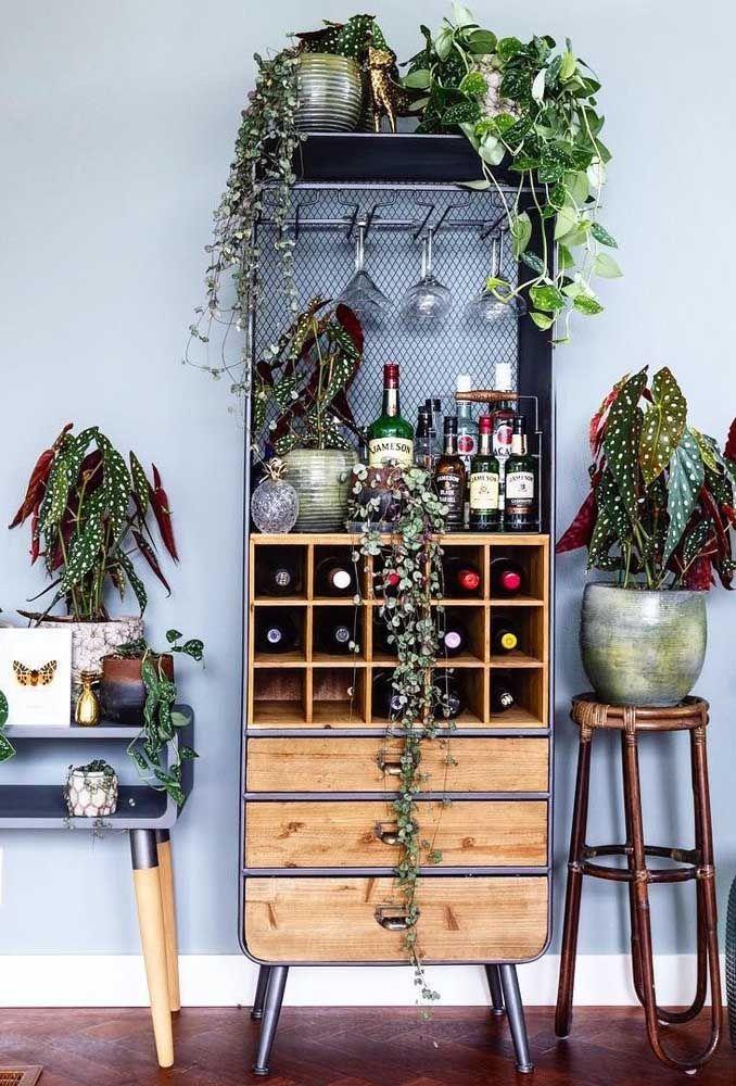 Um bar decorado com begônias: composição inusitada e muito original