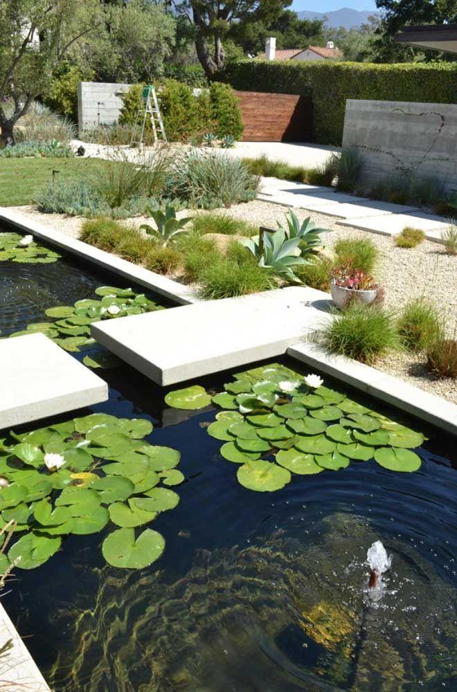 Vitórias régias são ótimas opções para decorar o lago artificial