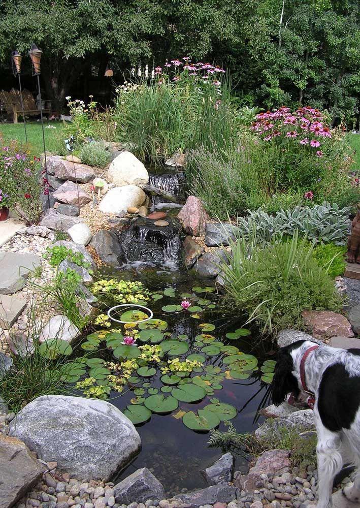 As plantas ajudam a criar a personalidade e estilo do lago