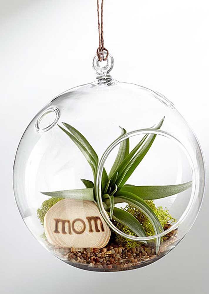Se a sua mãe gosta de plantas ela vai se apaixonar por esse terrário suspenso e o bacana dessa ideia é que você mesmo pode fazer