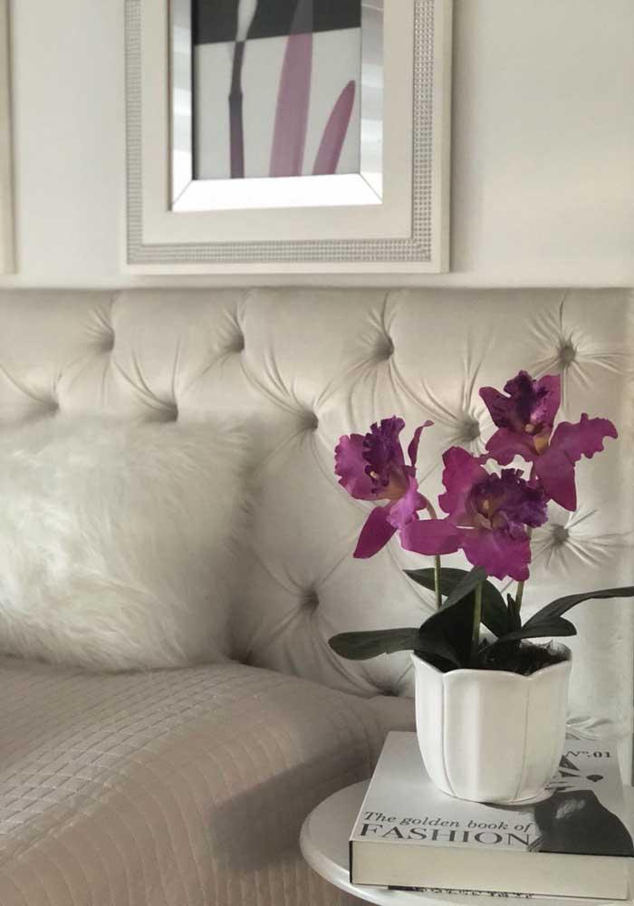 A orquídea Princesa do Sul se desenvolve melhor em locais de clima frio e úmido