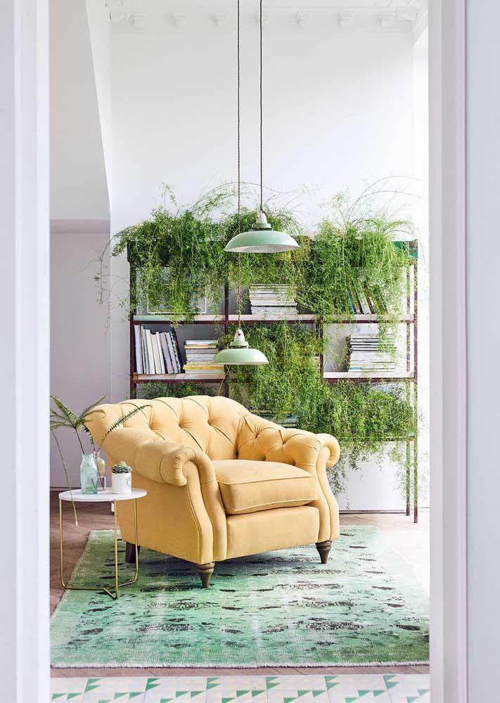 Estantes e balcões também podem se tornar jardins verticais