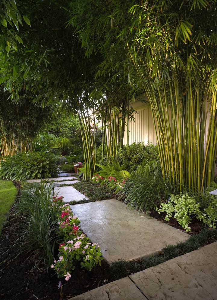 Jardim de inverno: solução verde para apartamentos