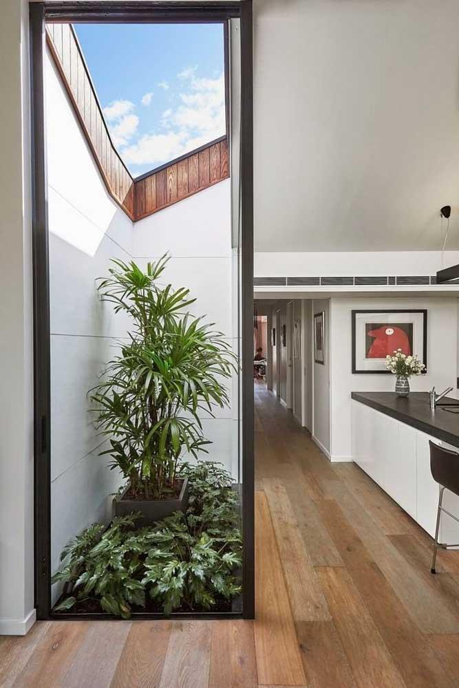 Inspiração para jardim de inverno pequeno, ideal para casas com pouco espaço