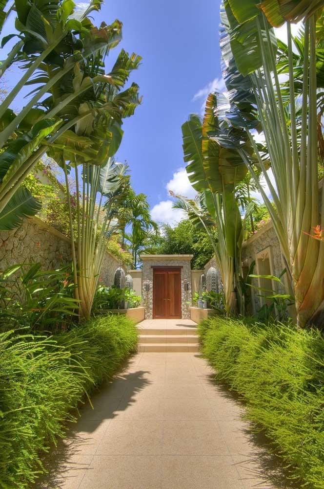 Caminho verde na entrada da casa