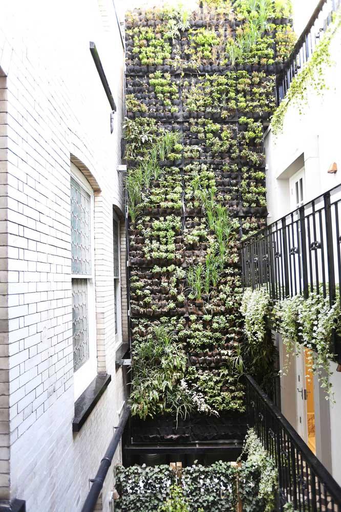 Os jardins verticais são cada vez mais comuns nos projetos modernos e urbanos