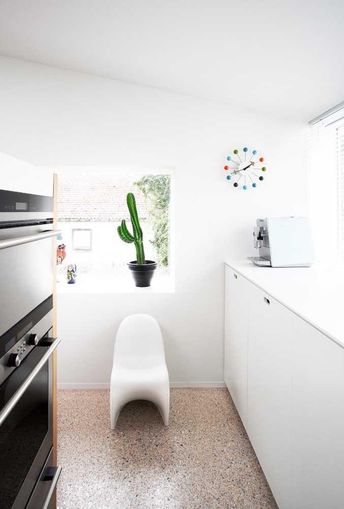 Os Cactus são uma ótima opção para quem não tem muito tempo para jardinagem