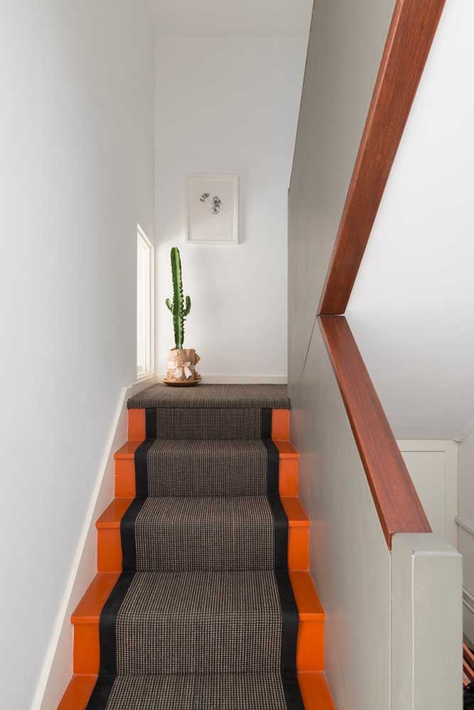 Apesar de gostarem de luminosidade, os Cactos são ótimas opções para ambientes internos