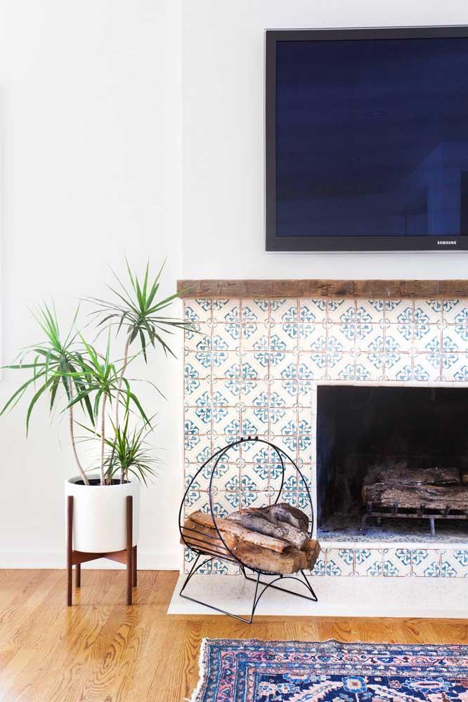 A Dracena também cresce com facilidade, ótima para vasos de chão da sala de estar