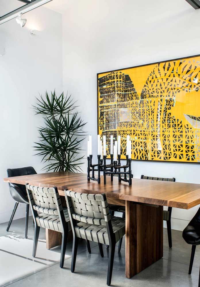 Se você procura uma planta para dentro de casa com volume e beleza, a Dracena é perfeita