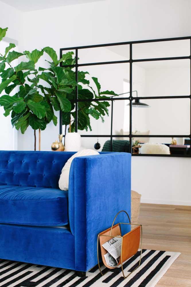 A Ficus Lyrata é aquela planta que está em alta na decoração e vive aparecendo nas inspirações do Pinterest