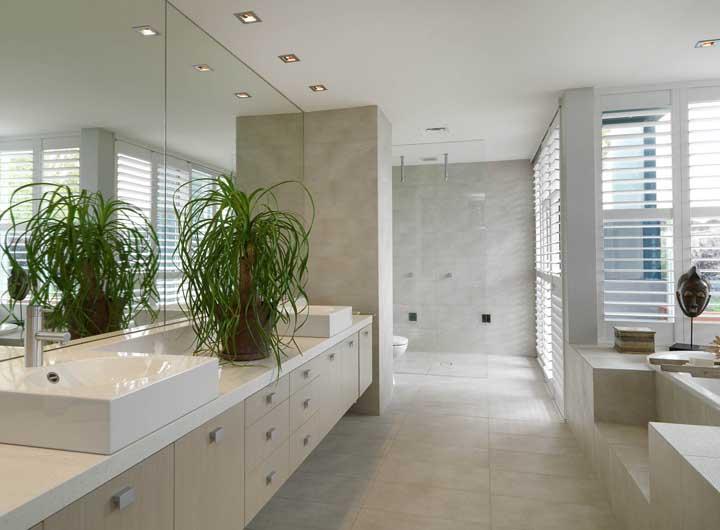 Por gostar de calor e ter crescimento lento, a Pata de Elefante é perfeita para as cozinhas, banheiros e halls de entrada