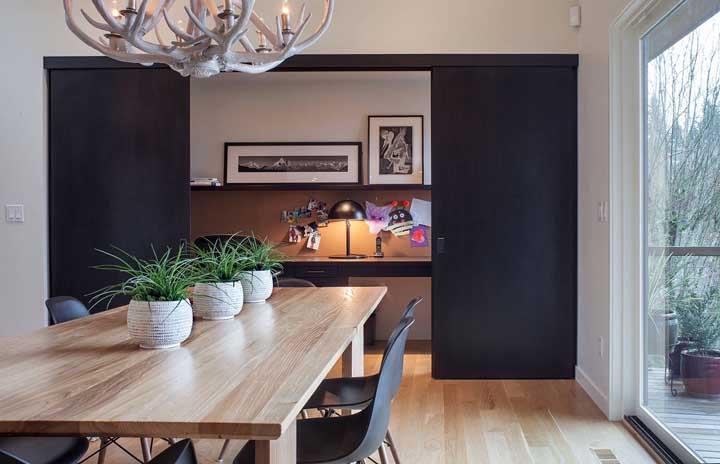 Plantas para dentro de casa: principais espécies para você escolher