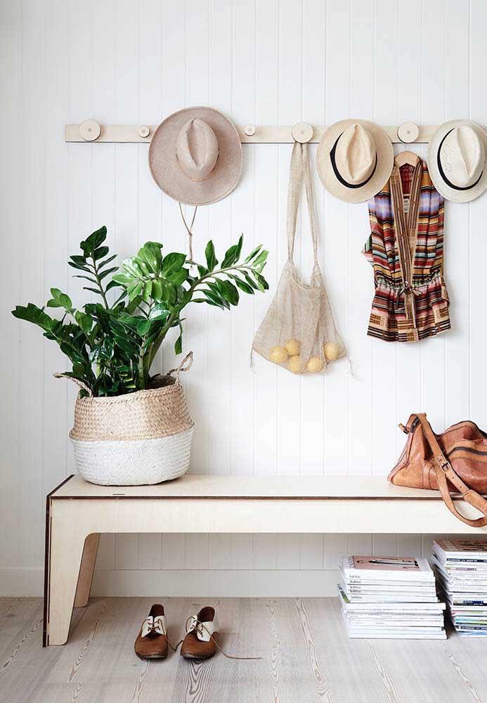 A exótica Zamioculcas é uma das mais procuradas para dentro de casa