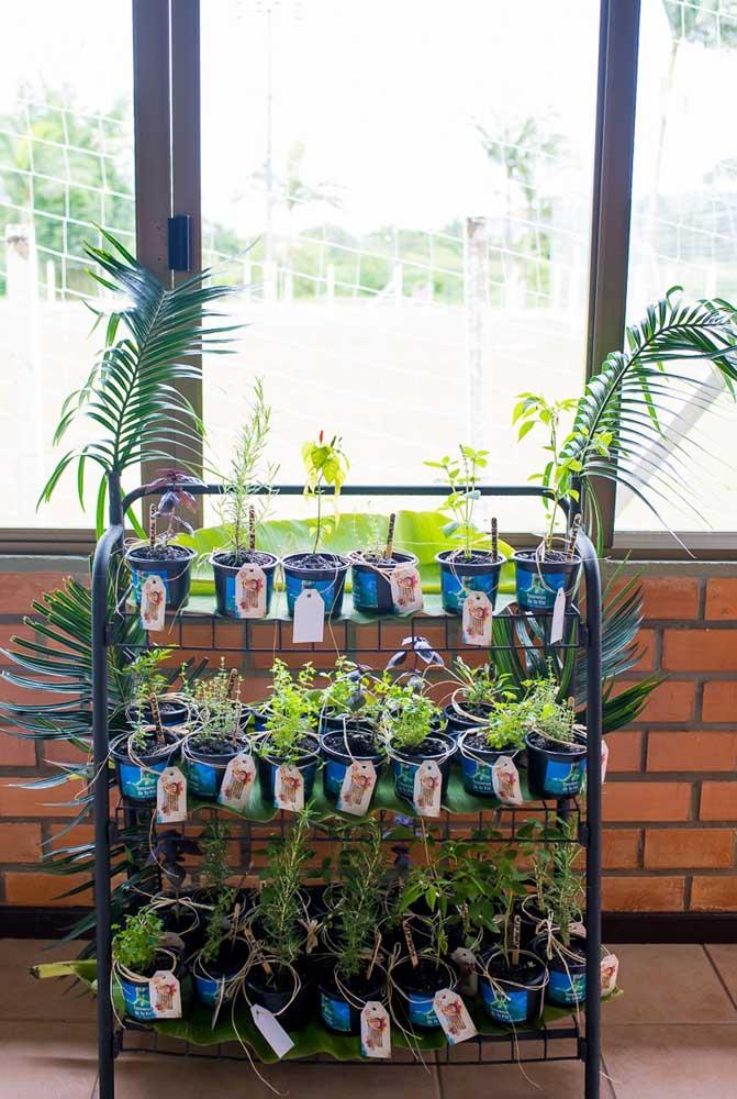 Um vasinho de planta é uma boa opção de lembrancinha