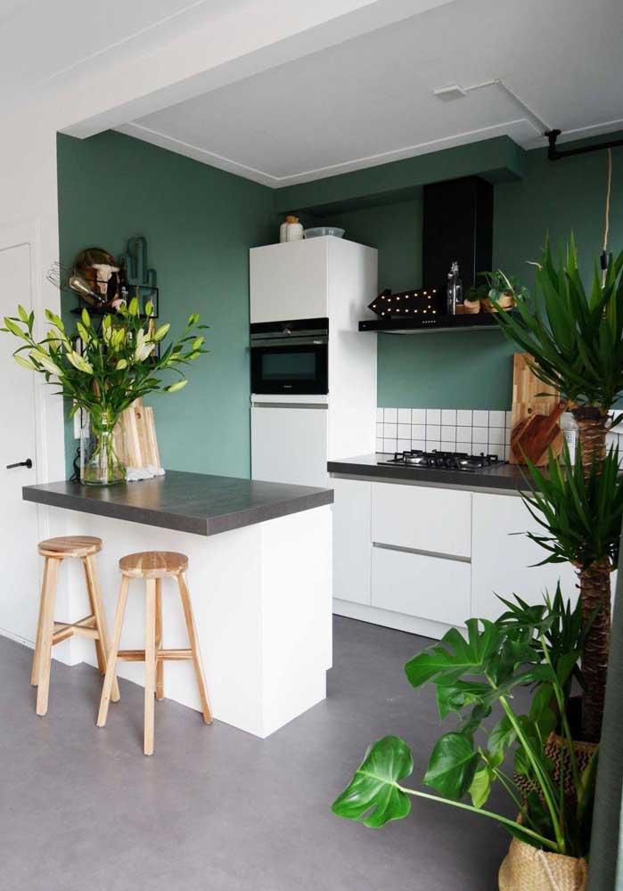Verde nas plantas e na parede