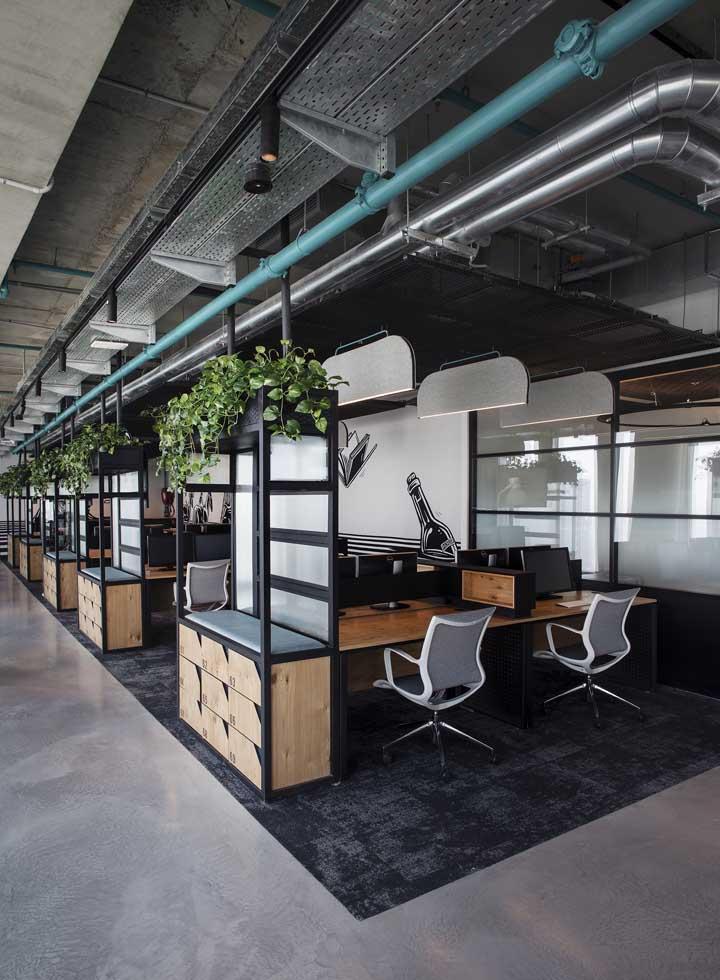 Plantas sempre devem fazer parte das decorações de escritórios, dos mais modernos, como este, aos mais clássicos