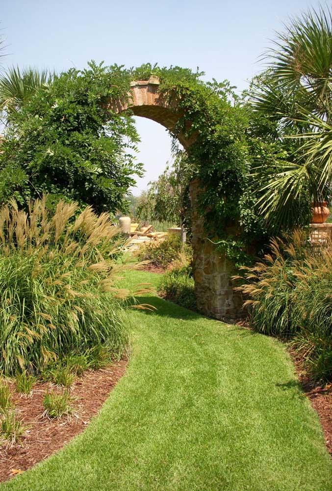 O tapete verde obtido com a grama batatais oferece um belo passeio para as tardes ensolaradas