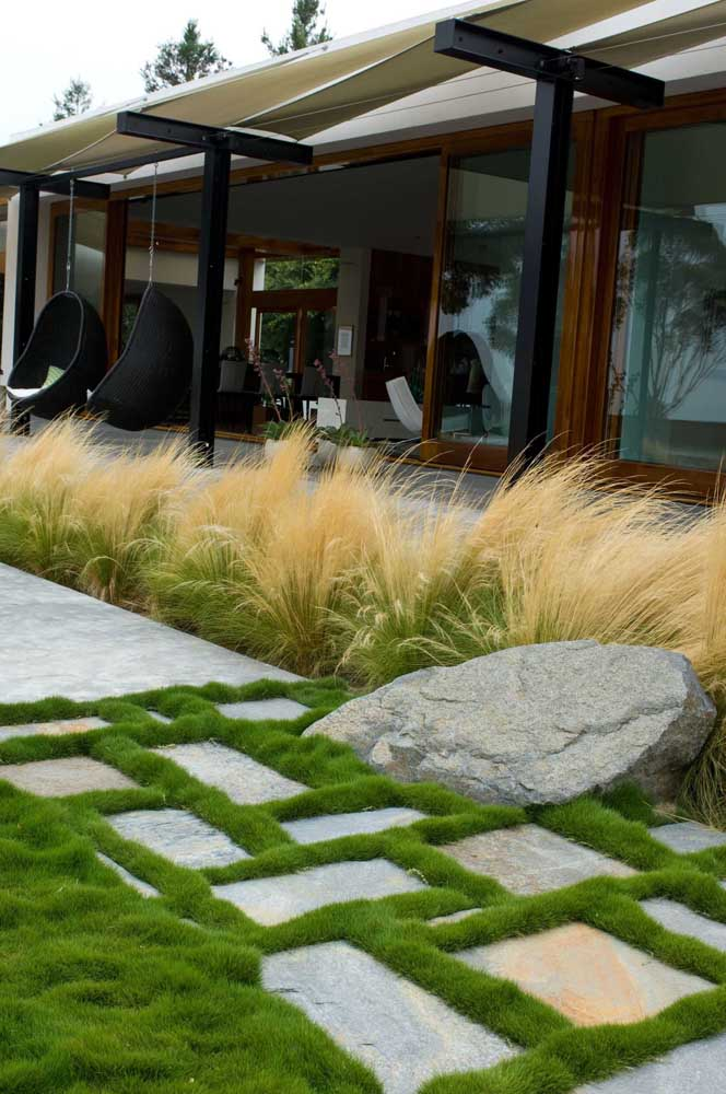 A grama coreana é ótima para formar desenhos e contornos