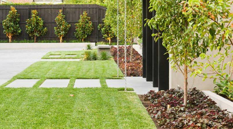 Tipos de grama: veja as características das gramas para jardim