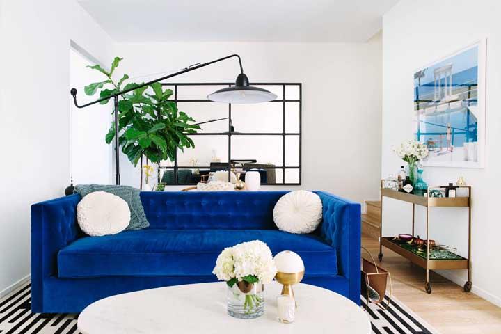 Mesmo pequena, essa sala de estar não se intimidou em usar um sofá azul royal cheio de presença