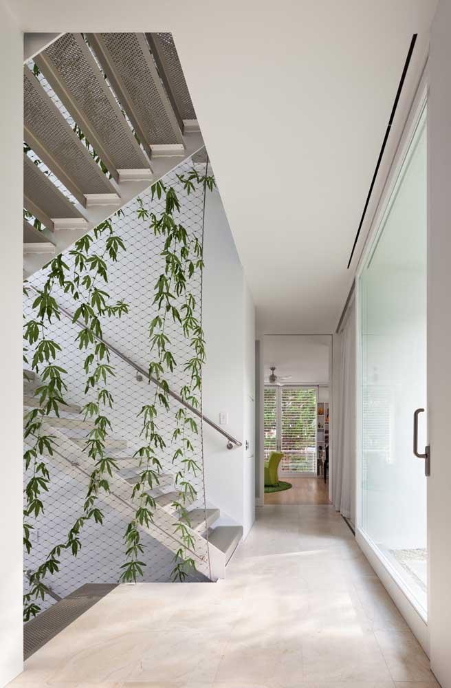 A tela de nylon foi usada em toda a extensão do pé direito alto dessa casa para servir de apoio ao crescimento da trepadeira
