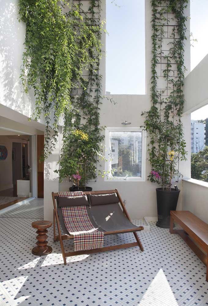 Indo e voltando: nessa área externa, as trepadeiras são cultivadas de dois modos diferentes, um suspenso e outro fixado à parede