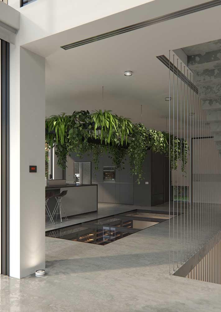 Jardim suspenso com plantas trepadeiras; aos poucos elas vão formando uma cascata verde dentro de casa
