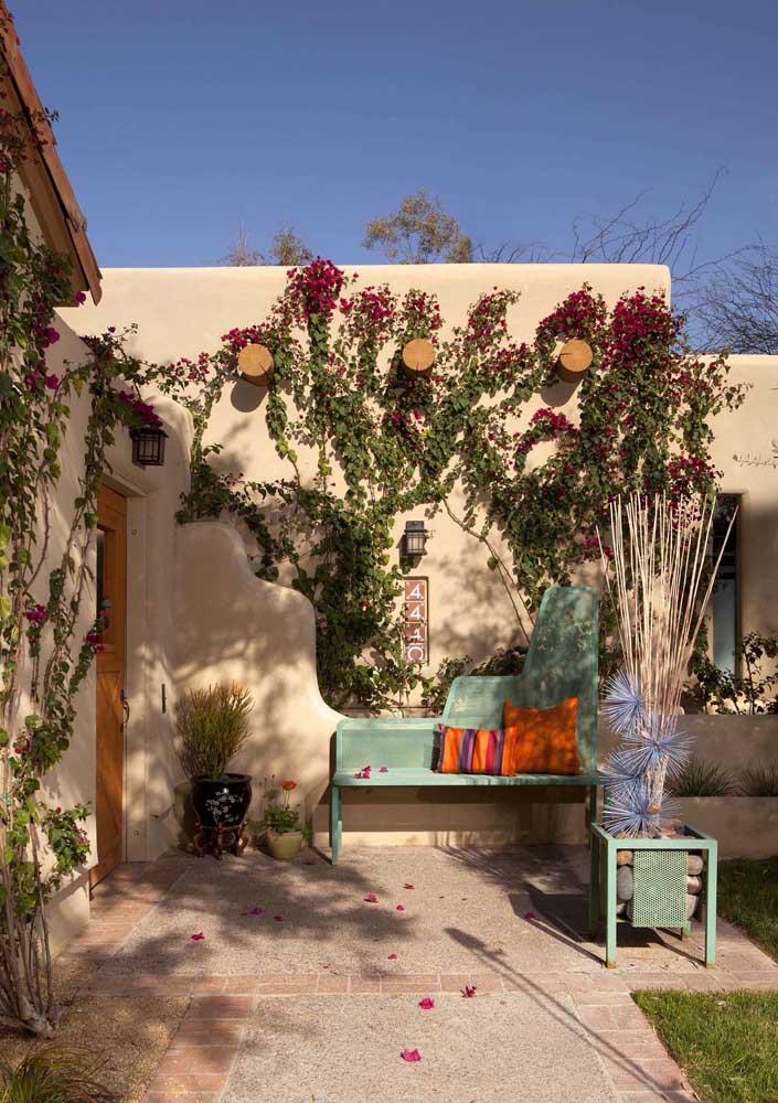 Já para esse quintal rústico e romântico, a trepadeira escolhida foi a Primavera