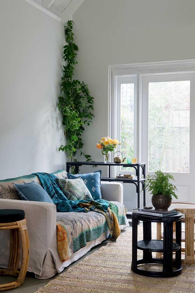 A sala de estar clean e neutra contou com o verde vivo e intenso da trepadeira plantada no vaso