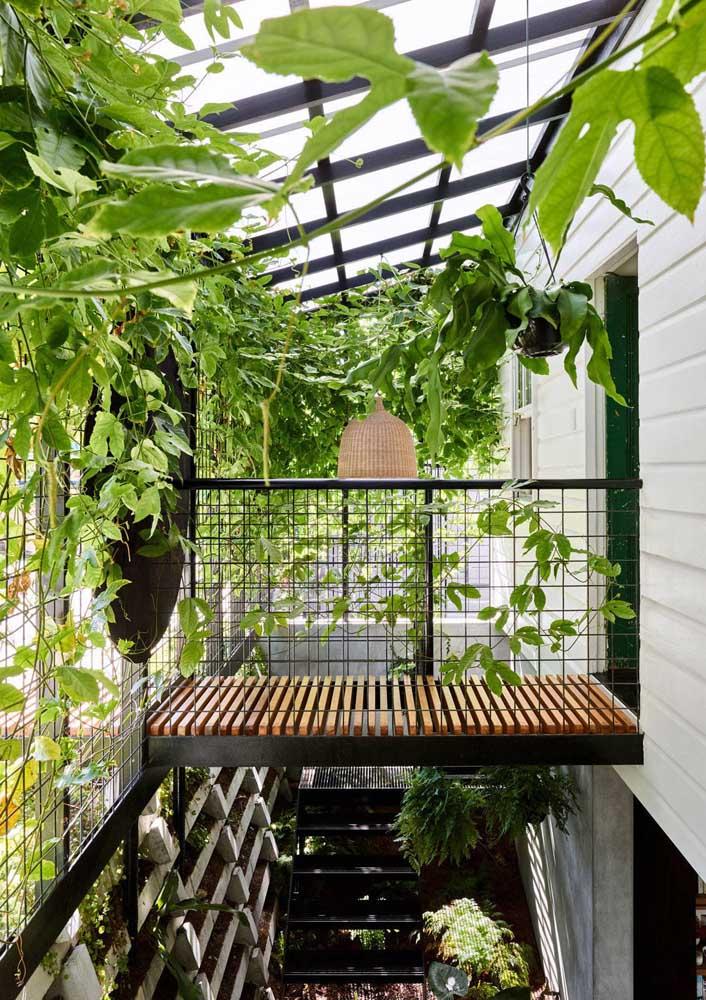 As trepadeiras criam um refúgio verde dentro dos ambientes urbanos