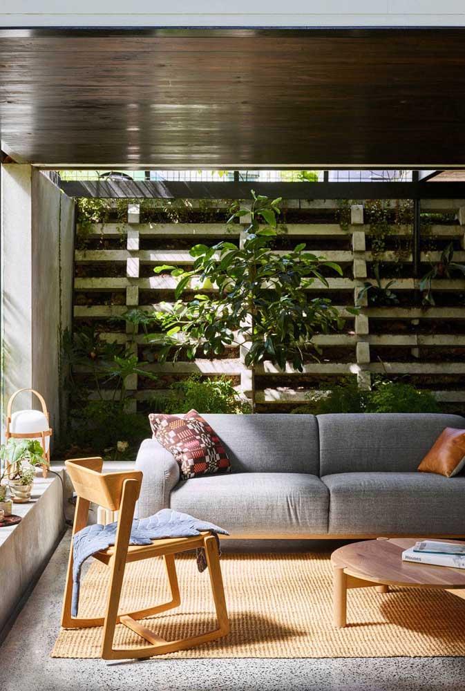 O jardim vertical dessa sala de estar apostou em espécies trepadeiras