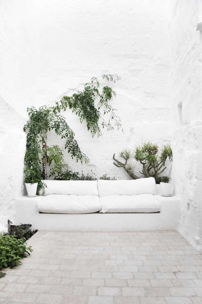 Nesse ambiente todo branco, as trepadeiras se destacam pela beleza e pelo contraste de cores que proporcionam